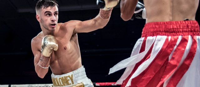 Andrew Moloney looks to emulate Jeff Horn title glory
