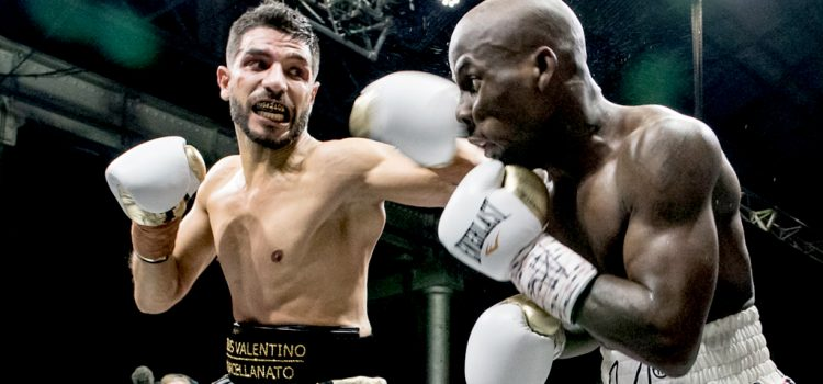 Billy Dib says farewell to the fight game